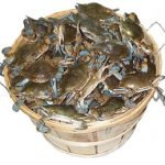 Crabs in a Barrel: Baby Mommas That Want Others to Suffer Too