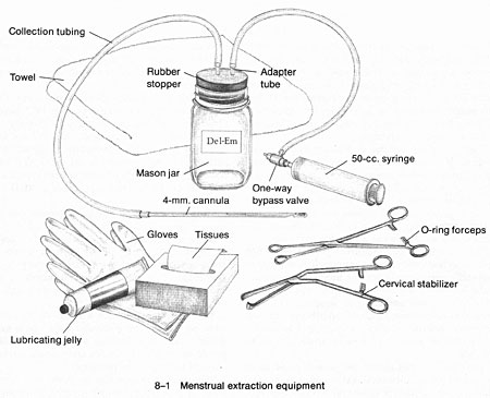 8_1_menstrual_extraction_large