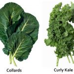 kale and collard greens are nutritional powerhouses